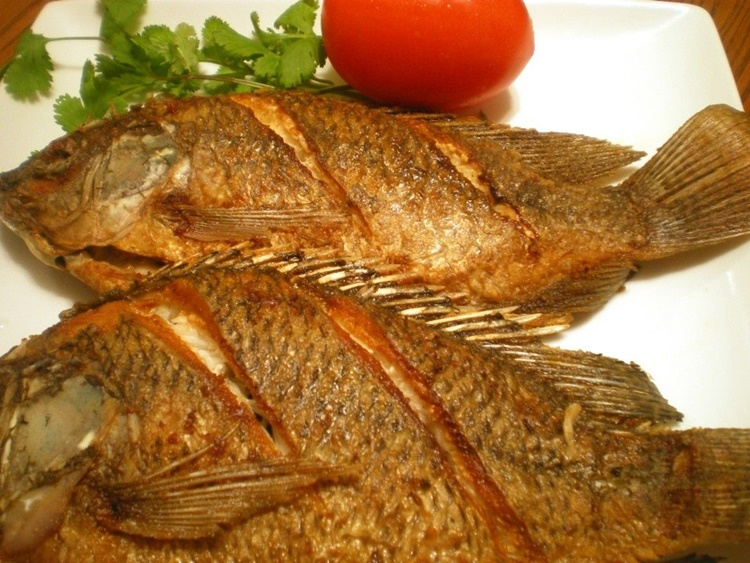Why Tilapia Is Not Healthy