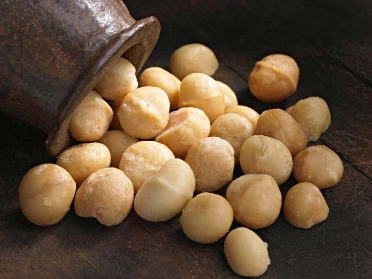 Macadamia Nuts Benefits